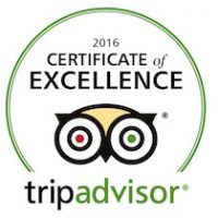 awards_tripadvisor